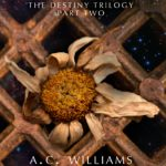 Namesake: The Destiny Trilogy, part 2 by A.C. Williams
