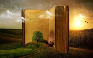 Journey in a Book