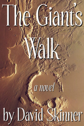 The Giant's Walk, David Skinner